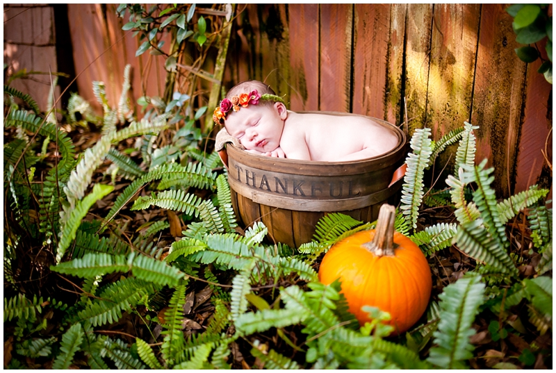 Autumn Fall Pumpkin Rustic Newborn photography by Chelsea Victoria